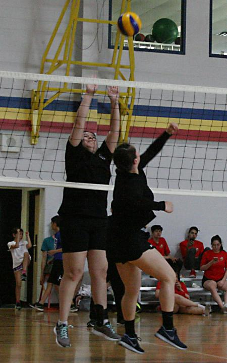 Volleyball 10