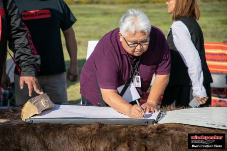 Buffalo Treaty 48